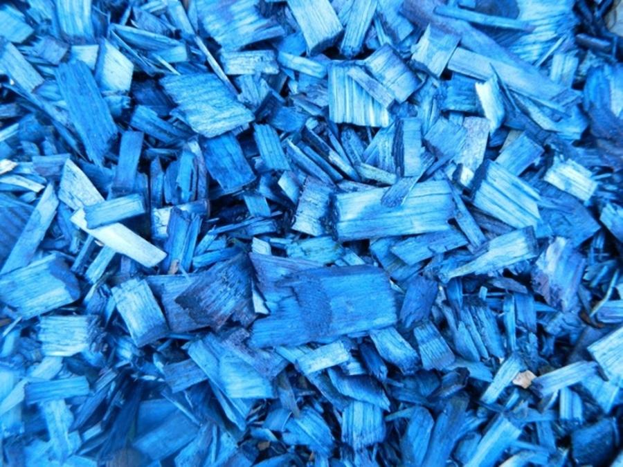 синяя кора